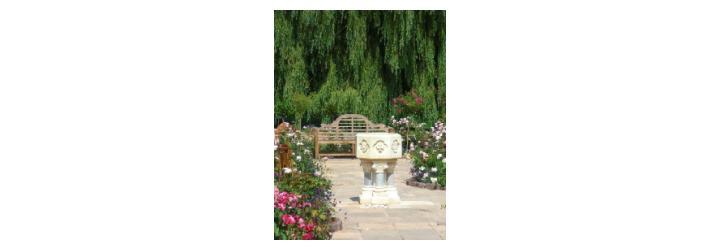 ASHA Centre garden